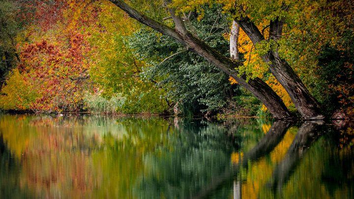 Autumn - Best Offers