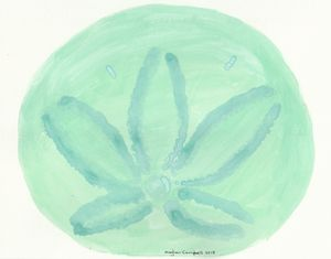 Sand Dollar - Green and Blue - Meghan Campbell