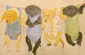 Puppys hanging around.