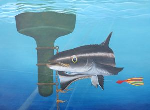 """Fishing the channel """"cobia"""""""