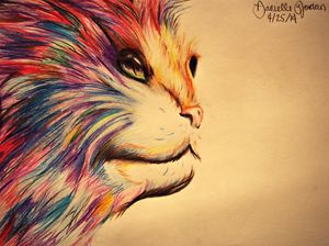 The Cat of Colors