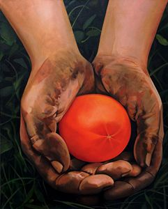 Hands Holding a Tomato
