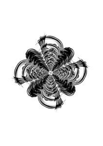 Spiral Symphony
