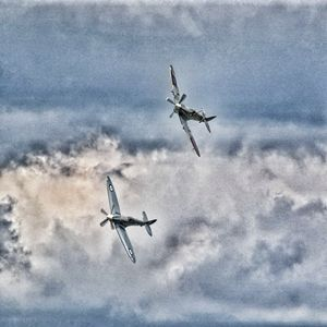 Grainy Spitfires