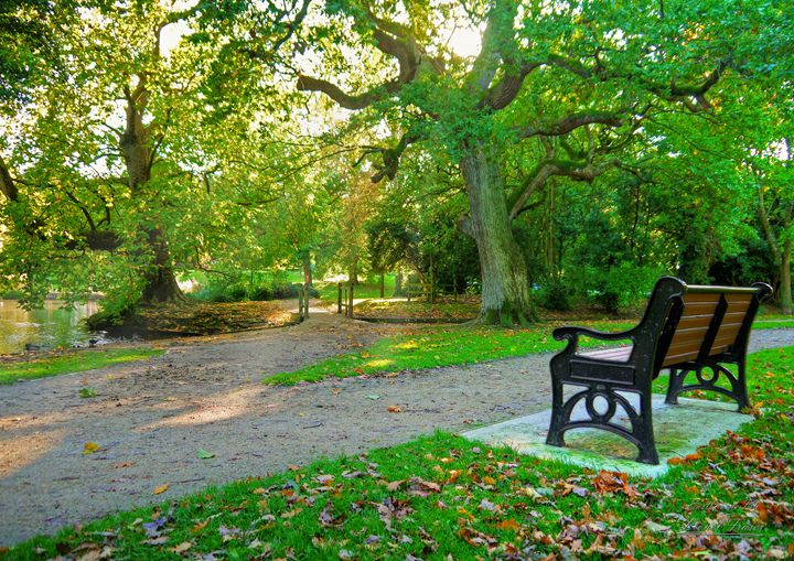 Autumn Path & Park Bench - Lionel Fraser, Pictures of Eastbourne, England