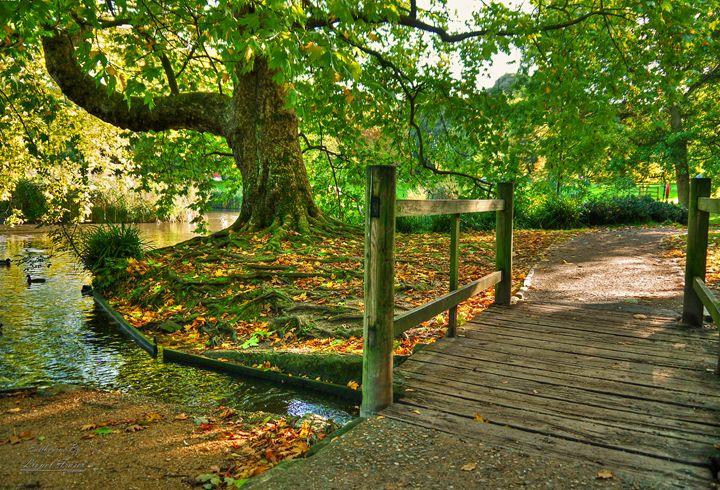 Autumn Footbridge in The Park - Lionel Fraser, Pictures of Eastbourne, England