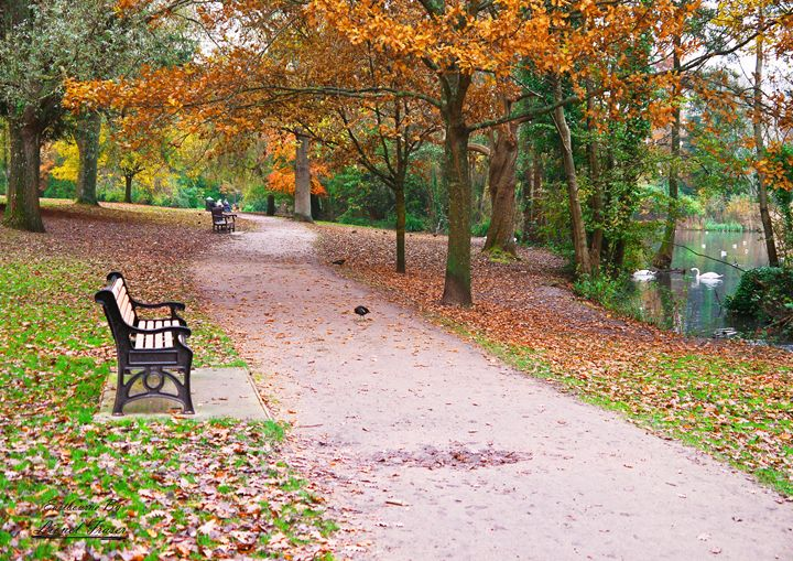 Autumn Path Through Hampden Park - Lionel Fraser, Pictures of Eastbourne, England