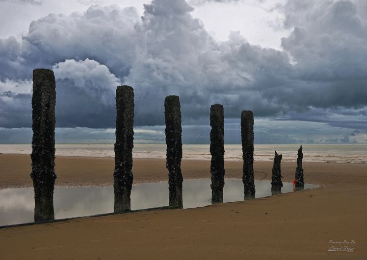 Mysterious Beach Groynes - Lionel Fraser, Pictures of Eastbourne, England