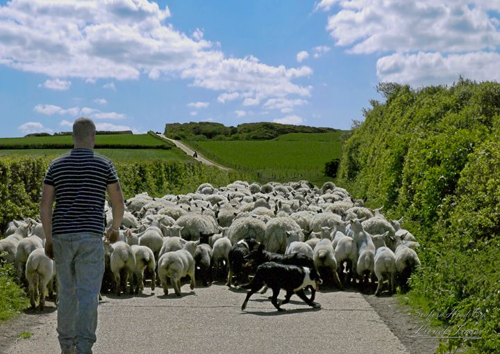 Farmer herding his sheep down a lane - Lionel Fraser, Pictures of Eastbourne, England