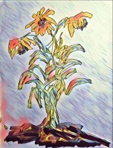 Sunflower Survives a Fire