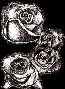 Ink Roses