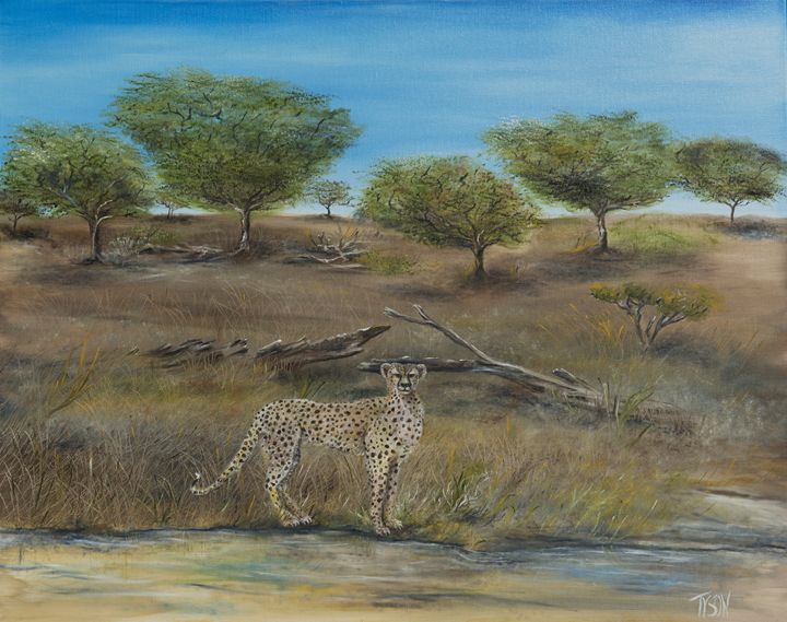 Cheetah stops to take a drink - Tyson environmental art