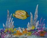 8 x 10 butterfly fish painting