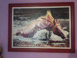 Horse surviving in watter