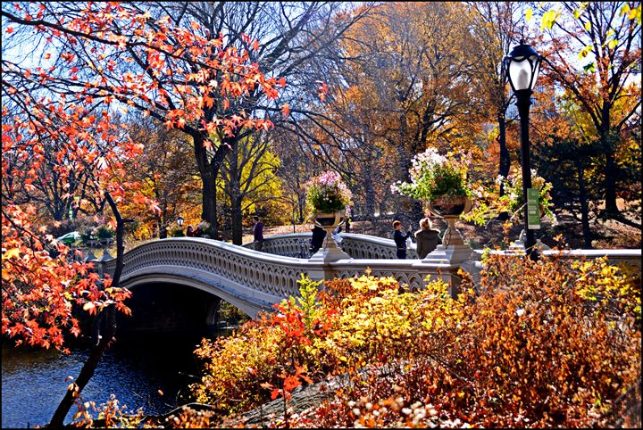 Bow Bridge in Autumn,Central Park - AllanE Photography