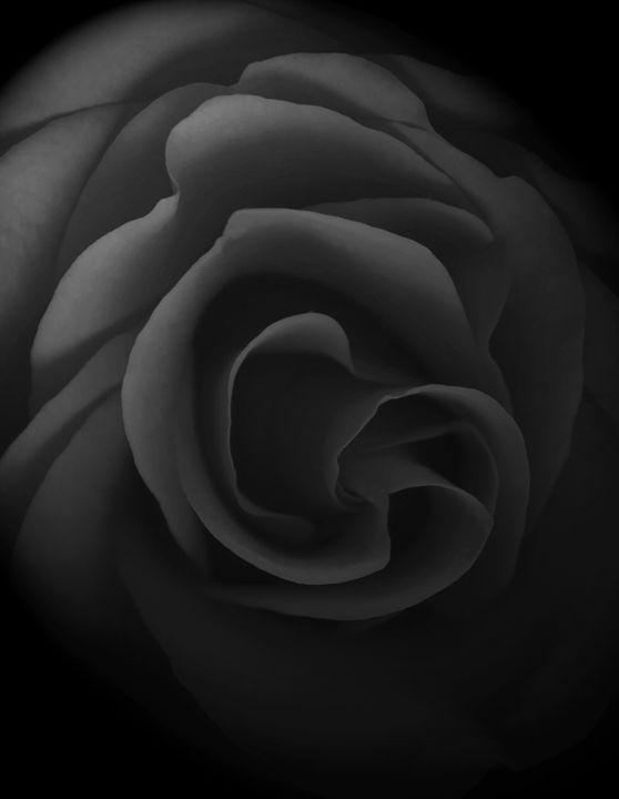 Fade to Grey - David Hughes