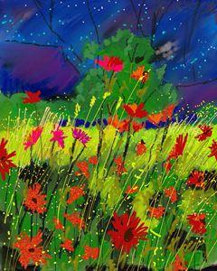Starry night over wild flowers