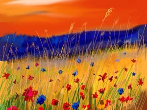 Sunset and wild flowers