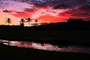 Garden Islan Sunset
