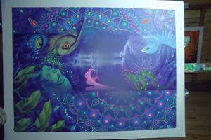 Misterios Azules de la Amazonia