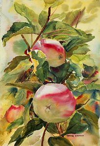 Autumn Apples
