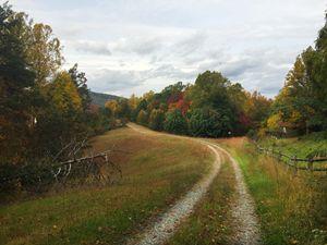 farm lane