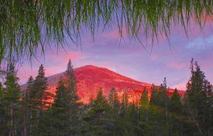 Grassy Glassy Alpine Sunset