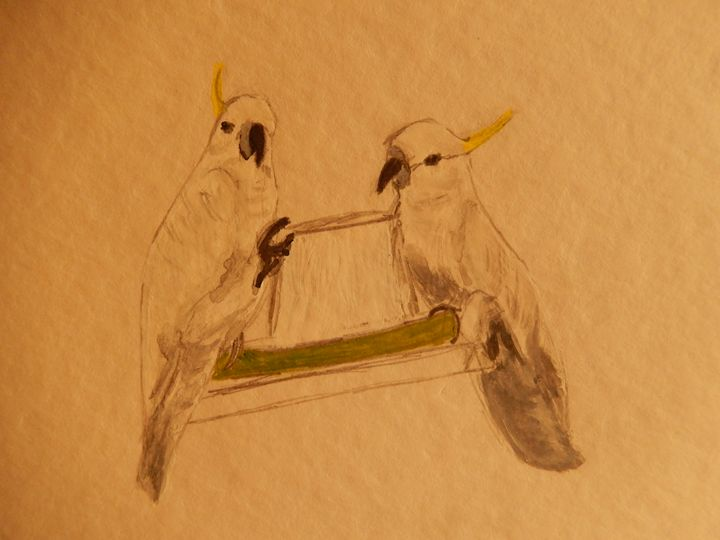 cockatoo mates - Islay's Inspirations