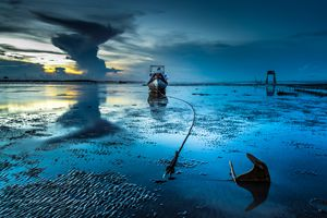 Wings of sea - Vietnam beauty landscape