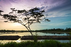Sunrise on salt field - Vietnam beauty landscape