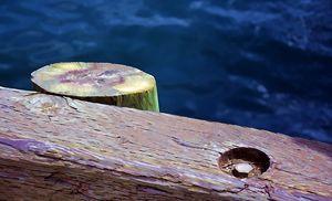Edge of the dock - Scott McKone