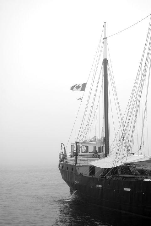Flag in fog - Scott McKone