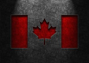 Canadian Flag Stone Texture - The Learning Curve Photography