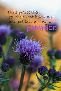Purple Inspirational Flower
