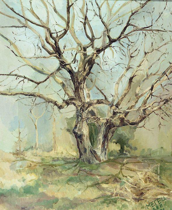 Walnut tree ( April ) - D. BRIGHT GALLERY
