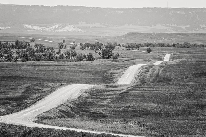 Road To Nowhere - Lilu & Bear Fine Art Photography