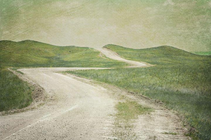 The Winding Road - Lilu & Bear Fine Art Photography