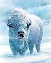 White Buffalo Handyman