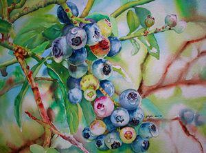 Random - Jelly's Arts