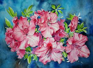 Azalea - Jelly's Arts