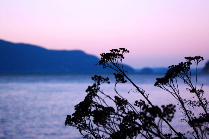 Pink Sunset - Brittany Megis Photography