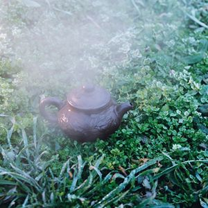 hot kettle on grass
