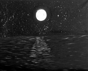 Nights Lights