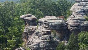 Beautiful Camel Rock