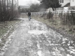 Walk in the Country