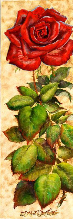 Long Stem Velvet Red Rose - Robert C. Murray II