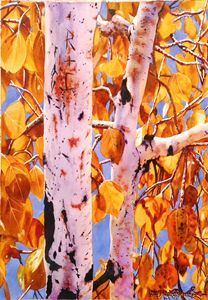 Autumn Gold-Aspens - Robert C. Murray II