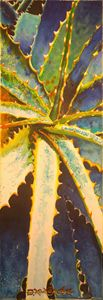 Aloe Vera-Savila - Robert C. Murray II
