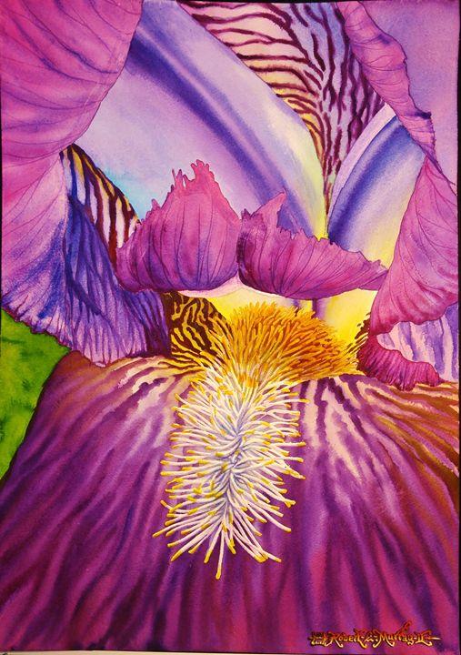 Undulating Iris - Robert C. Murray II