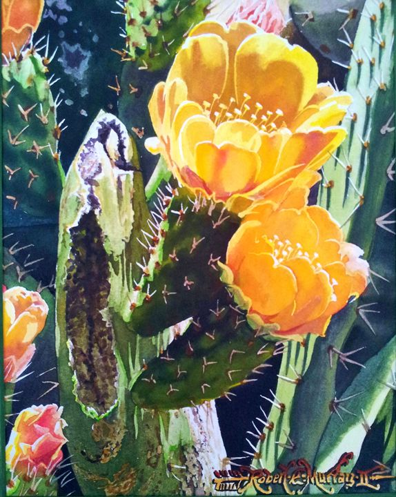 Cactus Rose Flowering - Robert C. Murray II